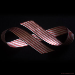 reversible ribbon rose/natural