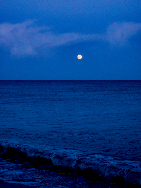 New Years Moon at Torcoss, Start Bay. Photo: Robert Ely