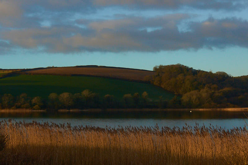 Slapton Ley, Start Bay AONB,South Devon. February morning. photo Robert Ely
